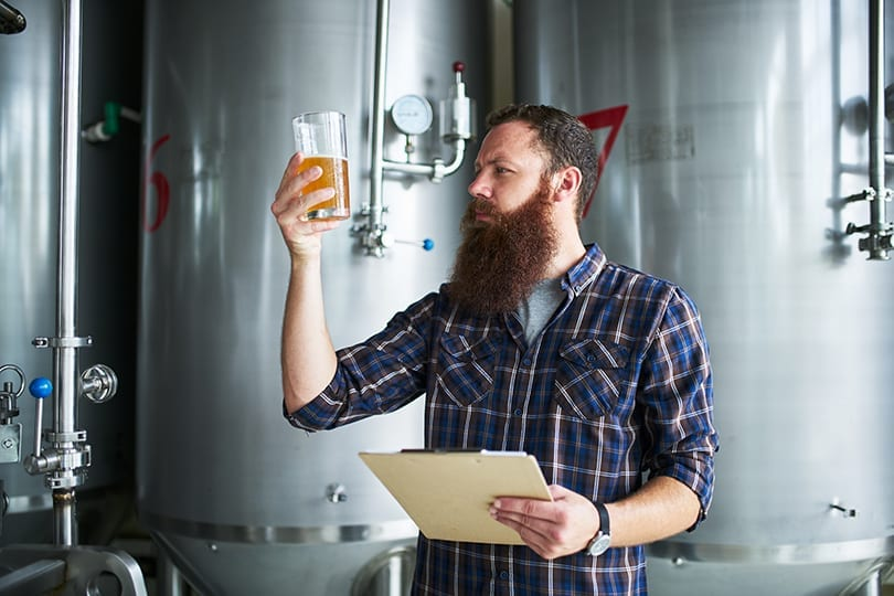 checking beer for quality at brewery